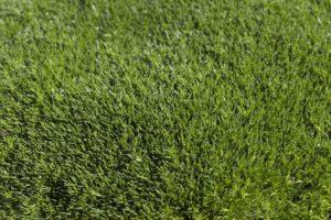 Precio instalación del césped artificial Sevilla - Solucont